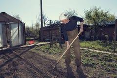 Кавказский человек засаживая в его саде используя грабл Над 65 летами старика с белым bandana стоковое изображение