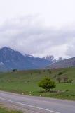 Кавказ Стоковое Фото