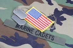 КАДЕТЫ США МОРСКИЕ разветвляют лента, заплата флага и регистрационные номера собаки на камуфляжной форме полесья стоковые изображения rf
