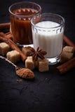 Какао, молоко, сахар и циннамон Стоковые Изображения RF