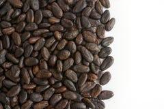какао фасолей Стоковое Изображение RF