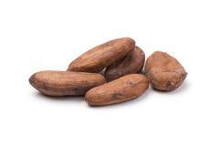 какао фасолей Стоковая Фотография RF