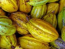 Какао Стоковые Фото