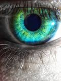Какой глаз видит в мире настолько черно-белом стоковое изображение