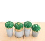 Кактусы в баках Стоковая Фотография