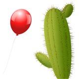 Кактус воздушного шара Стоковые Фото