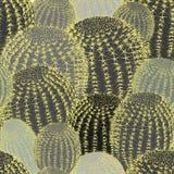 Кактус засаживает предпосылку картины текстуры безшовную стоковые фото