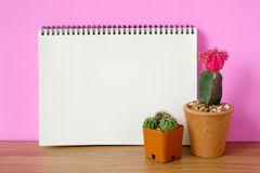 Кактус и пустая бумага тетради на деревянном столе и розовом backgro Стоковое фото RF