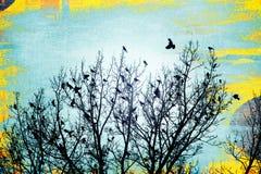 Как ворона летает стоковые фото