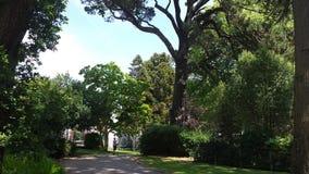 Как зеленый цвет парк Dunvant? Стоковые Изображения