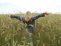 как птица освободите Стоковая Фотография RF