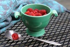 Как раз выбранные ягоды поленики в старой чашке Стоковое Изображение