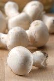 как раз грибы Стоковые Изображения RF