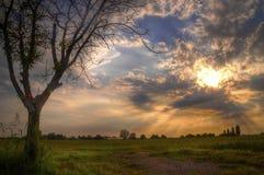 Как раз перед Солнце идет вниз Стоковая Фотография RF