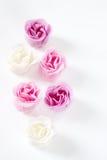 как розы рамки Стоковое фото RF