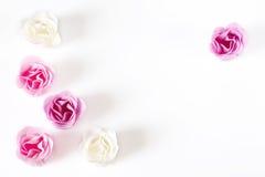 как розы рамки Стоковое Фото