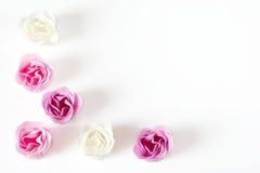 как розы рамки Стоковое Изображение