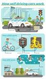 Как собственная личность управляя автомобилями работает Бесплатная Иллюстрация