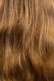 как текстура светлых волос предпосылки длинняя видимая Стоковое Изображение RF