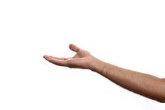 как удерживание руки если что-то Стоковое Изображение RF