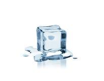 как холодный льдед Стоковое фото RF