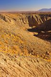калифорнийская пустыня Стоковое Фото