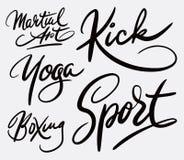 Каллиграфия почерка боевых искусств Стоковые Изображения