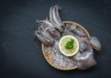 Кальмар морепродуктов свежий на корзине льда с петрушкой лимона на темной предпосылке стоковые фотографии rf