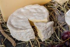 Камамбер Нормандии в соломе, молочном продучте стоковые изображения