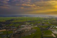 Камбоджийский ландшафт взгляда сверху поля риса стоковое изображение rf