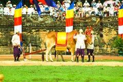 Камбоджа королевское паша presh bayon angkor Siem Reap церемонии vihear Стоковое Изображение RF