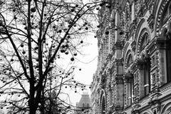 КАМЕДЬ магазина на предпосылке деревьев украшенных с шариками рождества красный квадрат ноча moscow Россия Стоковая Фотография