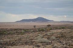 Каменистая пустыня с горами и деревьями в Намибии Стоковая Фотография RF