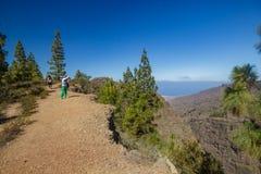 Каменистый путь на нагорье окруженном соснами на солнечном дне Ясное небо lue и некоторые облака вдоль линии горизонта Скалистый  стоковые изображения
