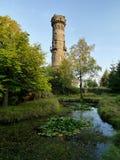Каменная башня бдительности Стоковые Фото