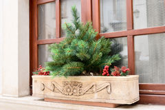 Каменная ваза Стоковая Фотография RF