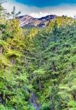 Каменная верхняя часть вулкана Agung и белого облака приходит от кратера, с чащами гигантского папоротника на ноге горы стоковое фото