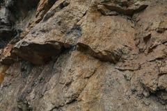 Каменная война Стоковая Фотография