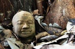 Каменная голова Будды на старых листьях Стоковые Изображения RF