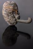 Каменная голова, камень, Стоковые Изображения RF