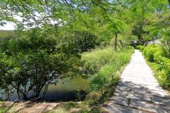 Каменная дорога озером любовника в долине валентинки университета xiamen, самана rgb стоковая фотография rf