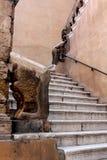 Каменная лестница в старом городе, Таранто, Апулия, Италия Стоковая Фотография