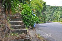 Каменная лестница от дороги стоковое изображение rf