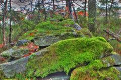 Каменная загородка Стоковые Изображения RF