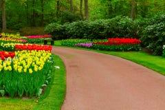 Каменная замотка пути в саде Стоковые Фото