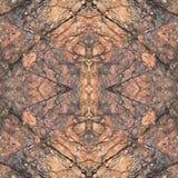 Каменная картина Стоковые Изображения RF