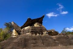 Каменная красота и небо леса Стоковое Фото