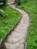 Каменная лестница окруженная растительностью стоковые изображения