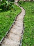 Каменная лестница окруженная растительностью стоковые фото
