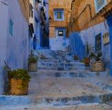 Каменная лестница с баками заводов среди голубых стен medina Chefchaouen, Марокко Стоковое фото RF